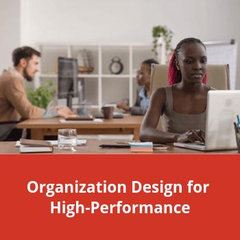 Feature-organization-design-hp